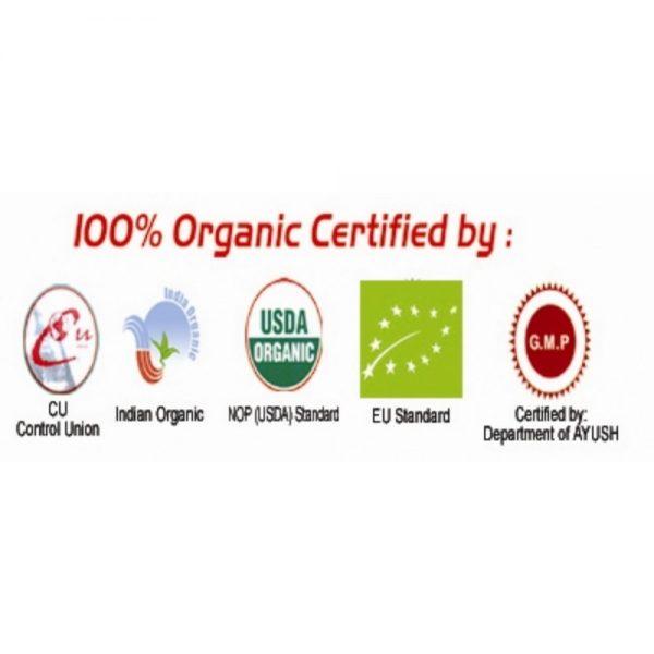 all-logos-3-1000x1000