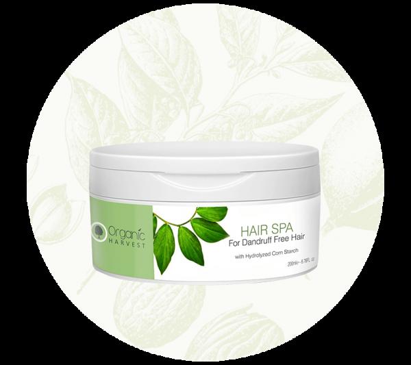 Hair-Spa-for-Dandruff-Free-Hair