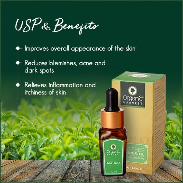 Tea-Tree-USP-&-Benefits
