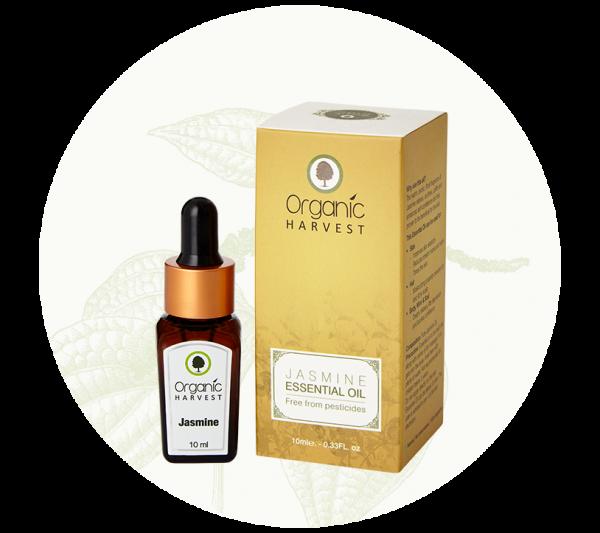 essential-oil-jasmine-02