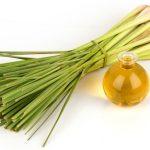 what-is-lemongrass-oil